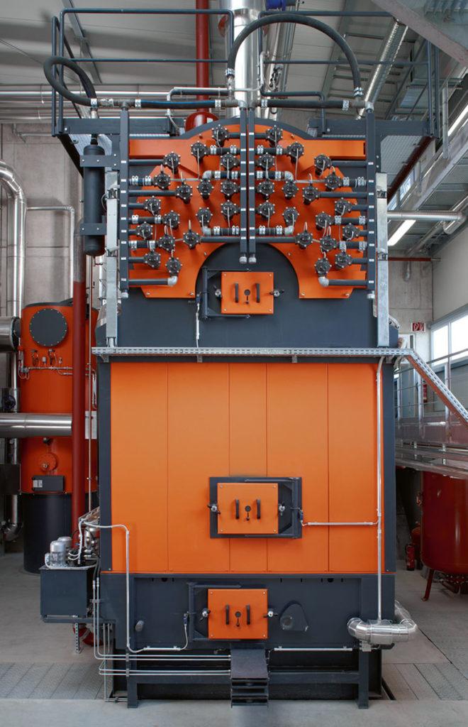 Biomass-fired boiler